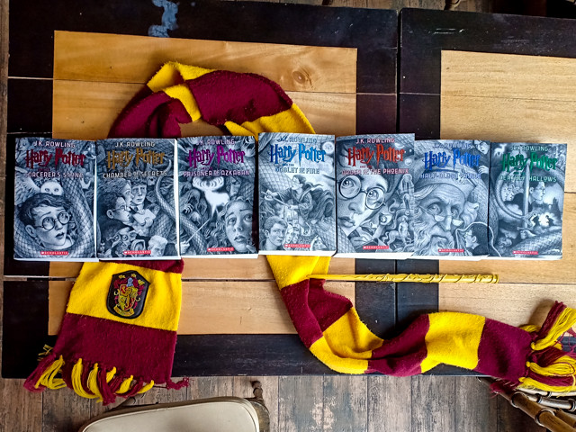 Harry Potter 20th Anniversary Cover (12 of 29)