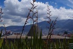 La Capilla del Hombre - Quito, Ecuador