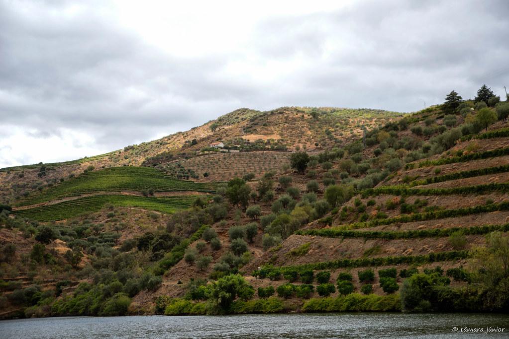 2015 - Pescaria na Ferradosa (13)
