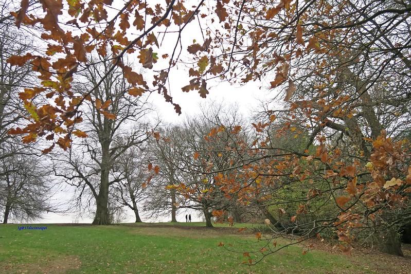 Kenwood-House-Hampstead-Heath-travel-london-BLOG-17docintaipei (15)
