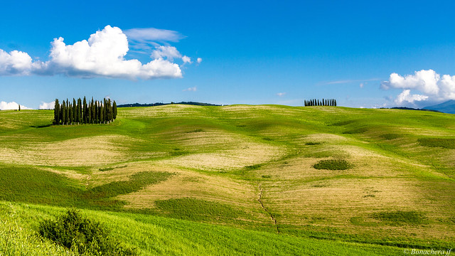 val d'Orcia-043