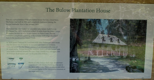 Bulow Plantation (#0453), Nikon D5600, AF-S DX VR Zoom-Nikkor 18-55mm f/3.5-5.6G