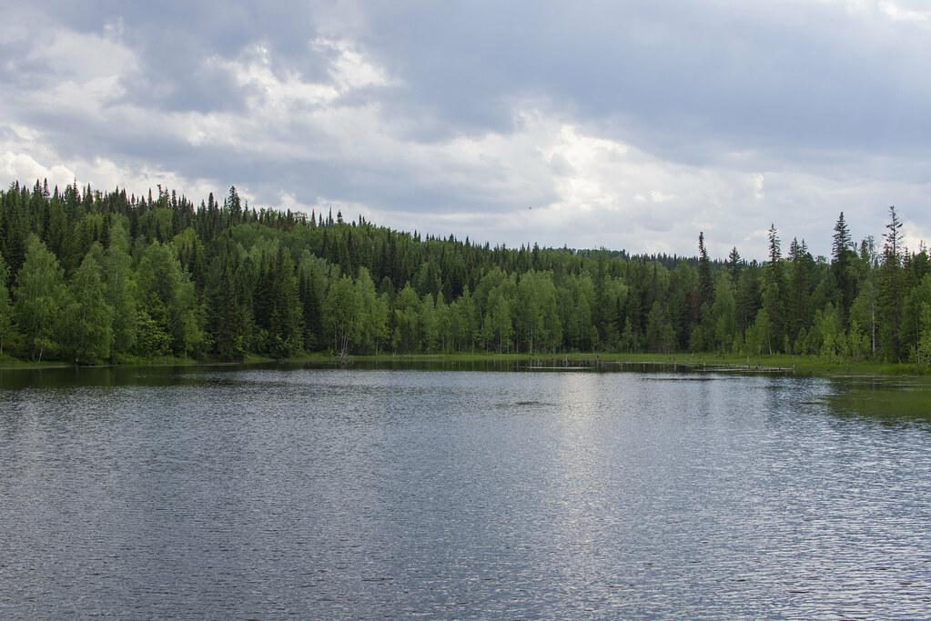 Таёжное озеро.