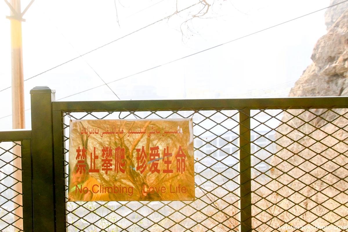 China Travel_065