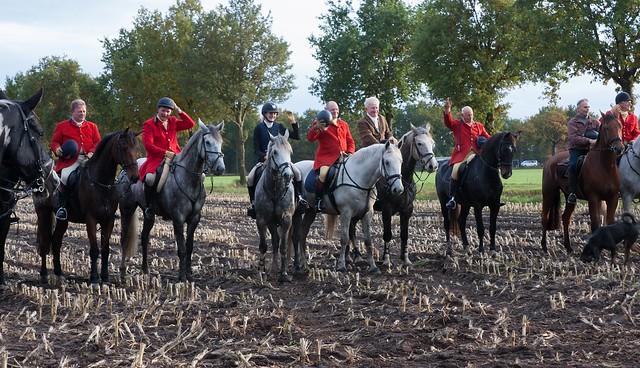 Midland Hunt Landhorst 2015-9241