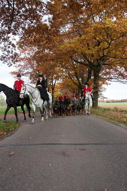 Midland Hunt Landhorst 2015-9153