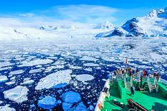 Antarctica-111124-985