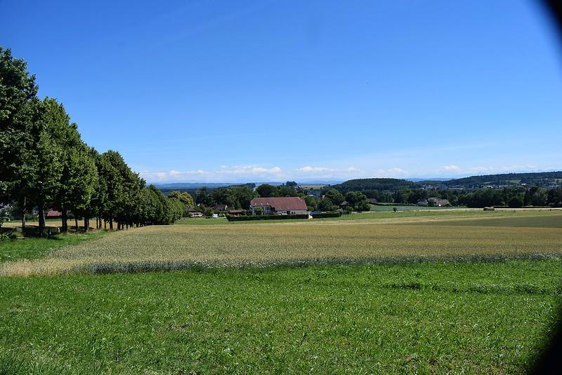 Feldbrunnen 22.06 (1)
