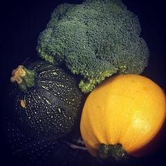 Brócoli, calabacín verde y amarillo redondo al vapor. Preparando la semana #verdurafresca #verduradeverdad #vitamin #minerales #nutricion #sanoyrico #delicious #enunpispas #comomegusta #alimentarse #comidacasera