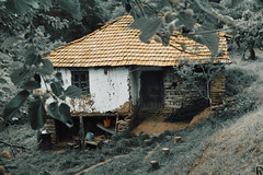 House | Divjanci, Kriva Palanka, Macedonia