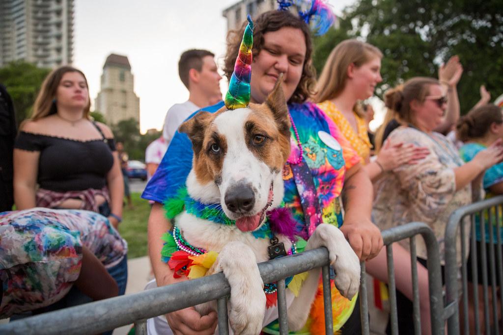 2018 St. Petersburg Pride Parade | CityofStPete | Flickr