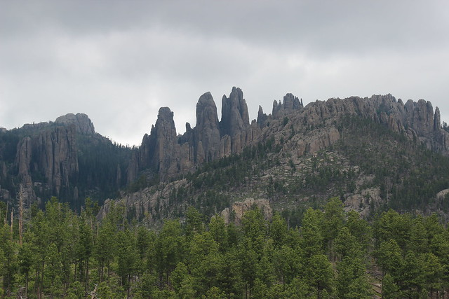 062518 Custer State Park (339)