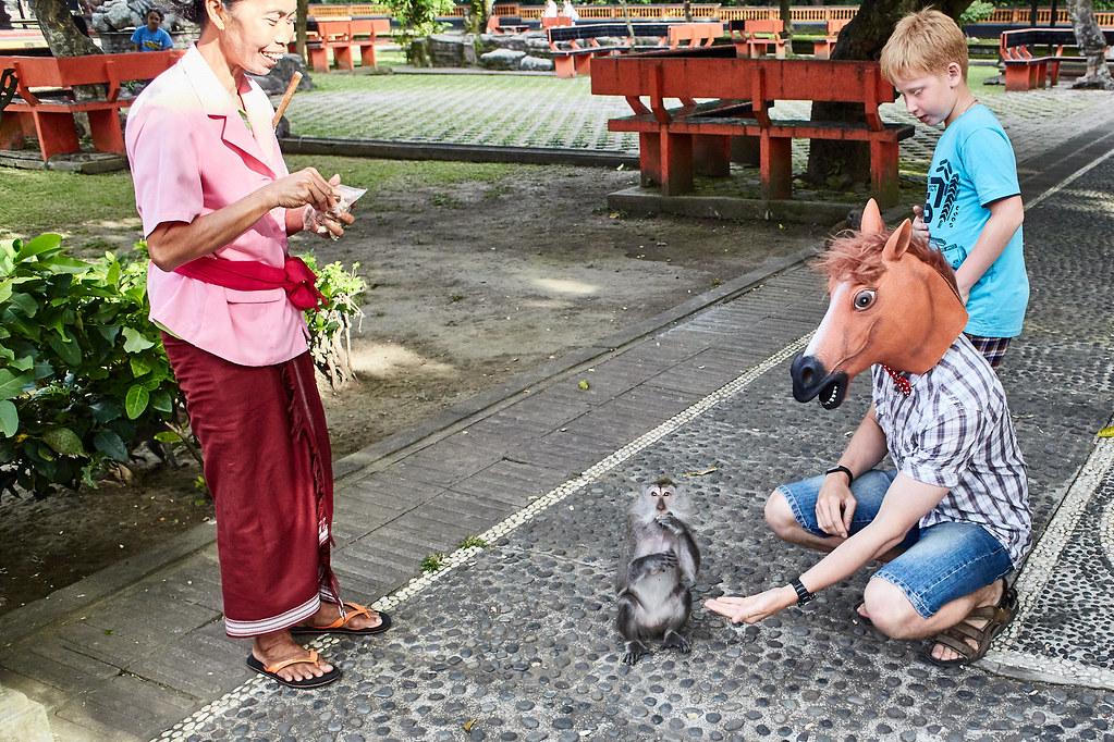 На перекладных по Азии. Бали - райский остров?