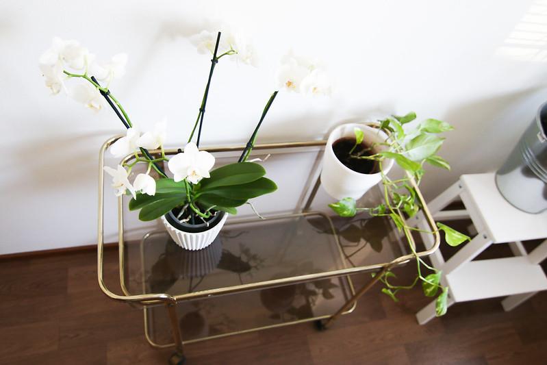 lasinen tarjotinpöytä blogi3