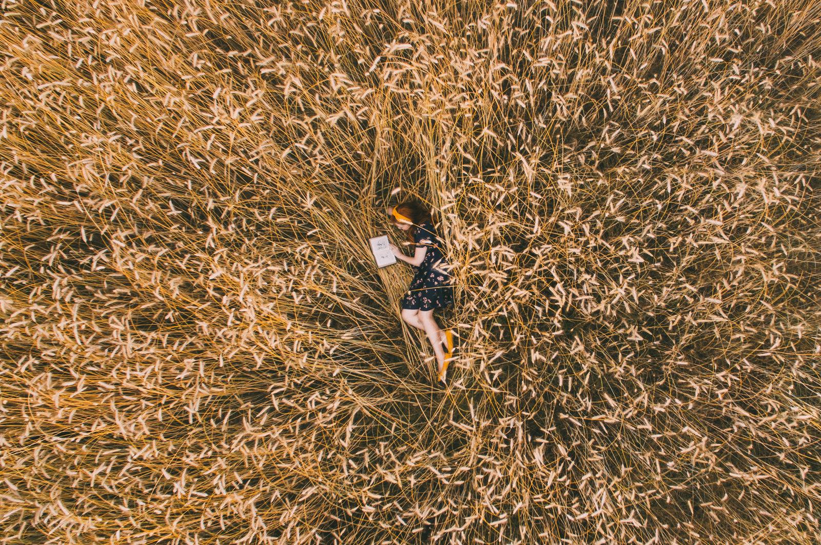 wheat shoot-1-3