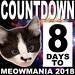 8 days until Meowmania! #meowmania2018 @northbrooklyncats @whiskers_agogo @bushwickbark @pineboxrockshop