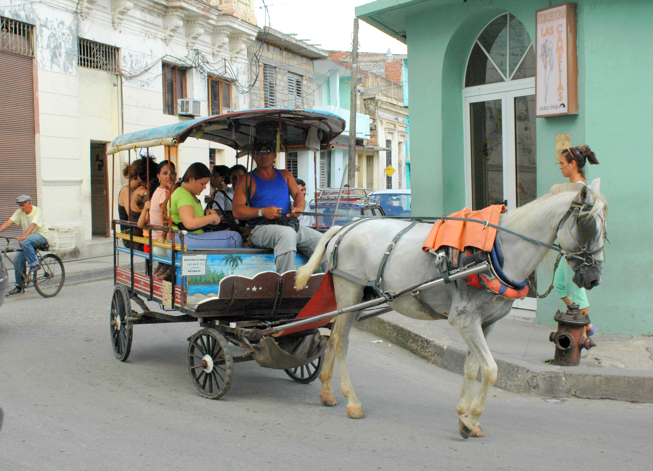 Horse-drawn carriages (carretones or coches de caballo) are one of the most common forms of local transportation in many areas of Cuba today.