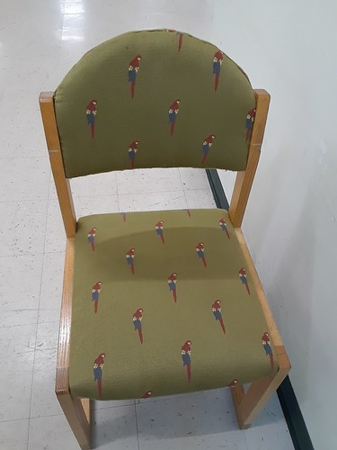 Parrot Chairs