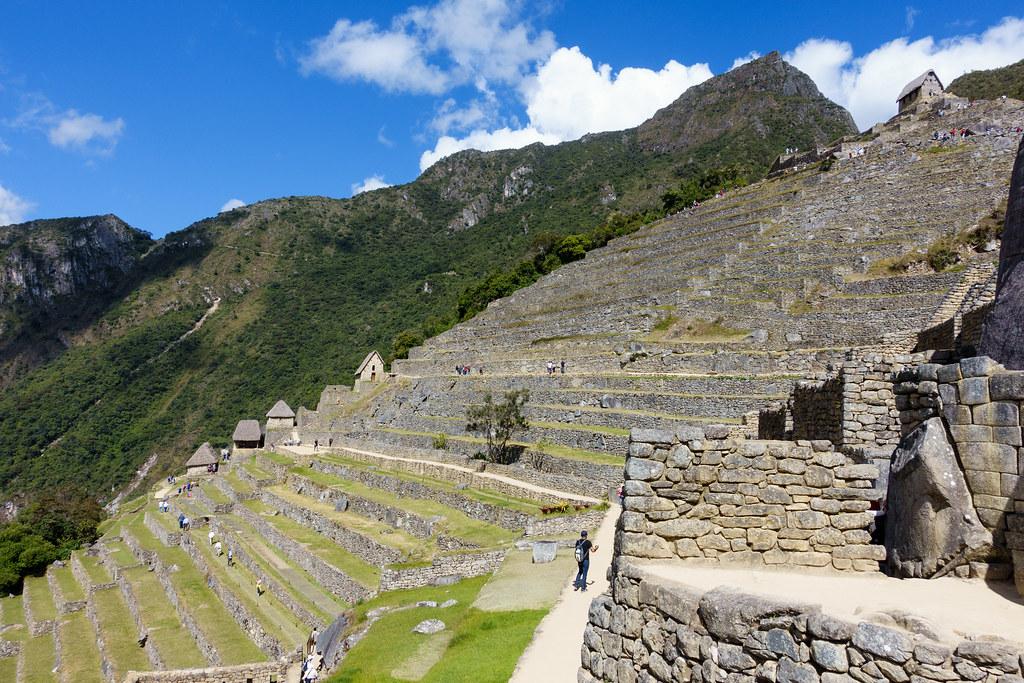Machu Picchu-05506