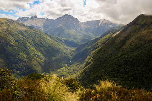 New Zealand-20