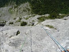 Climbing high above