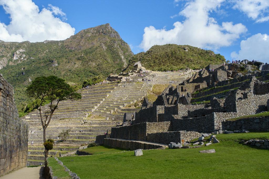 Machu Picchu-05582