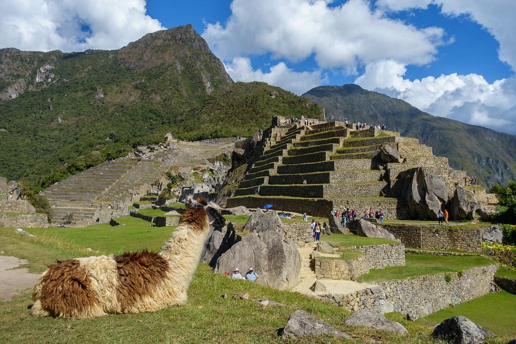 Machu Picchu-05550-2