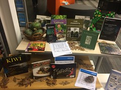Matariki display, South Library