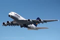 Lufthansa | D-AIMA