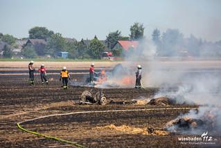 Flächenbrand Hattersheim 03.07.18