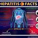 Hepatitis C Facts