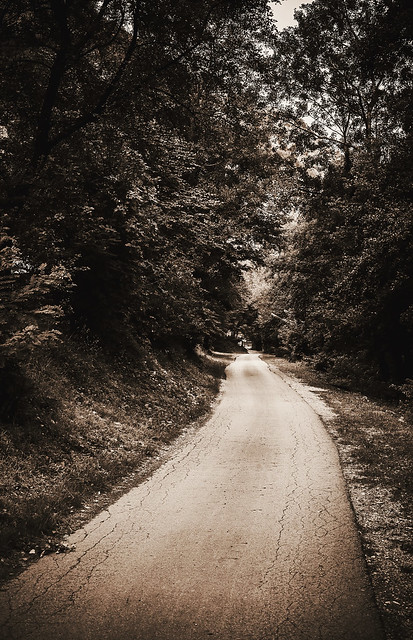 Old Forest Road, Canon EOS 5D MARK II, Canon EF 35-80mm f/4-5.6