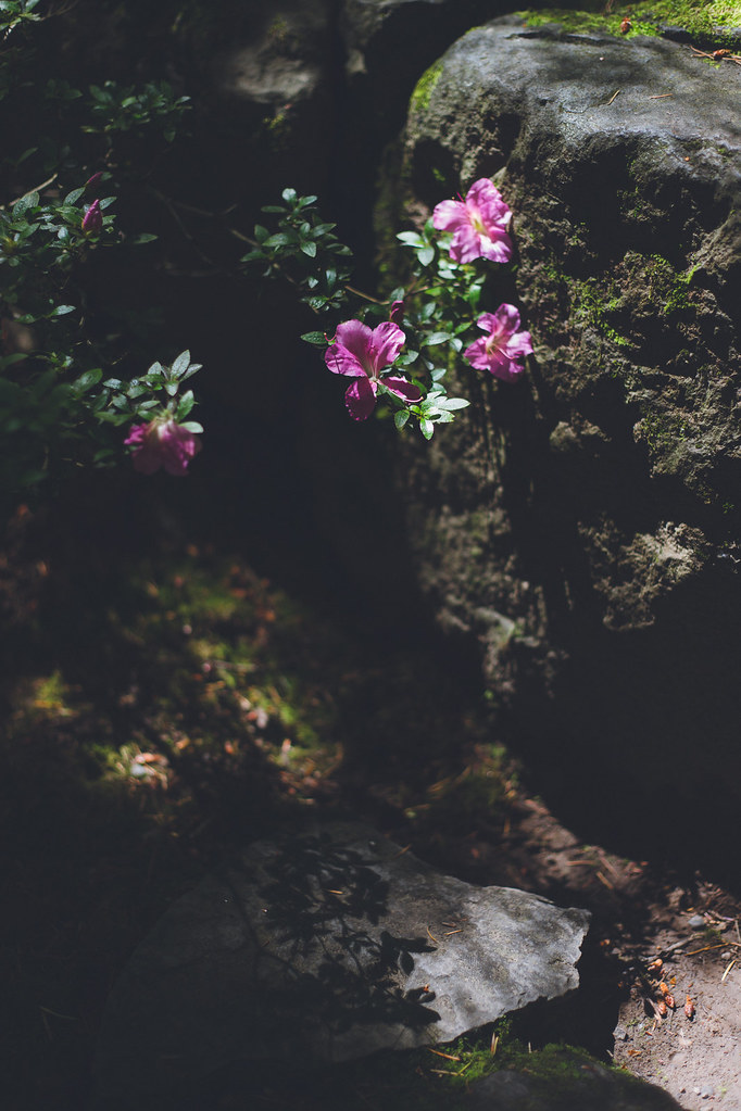 Kisiel-2018-06-23-015