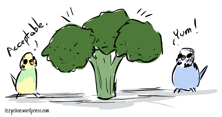 dennis wilson budgies broccoli