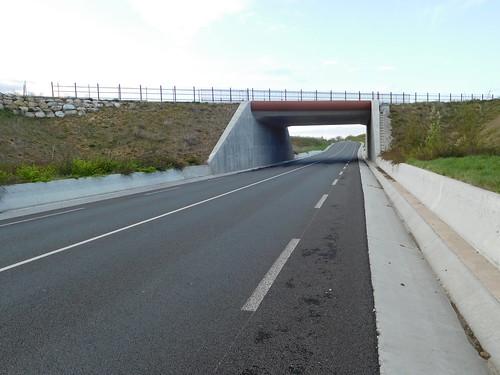 Road and rail bridge