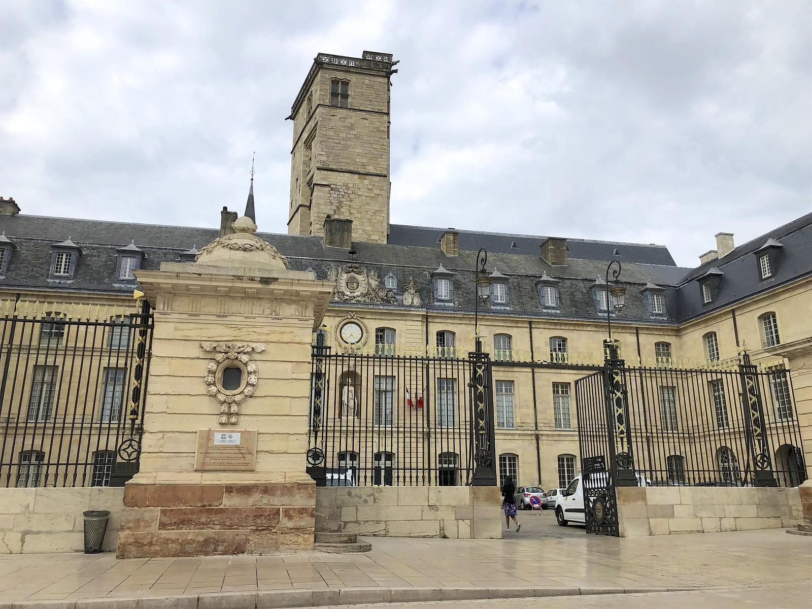 Dijon kokemuksia
