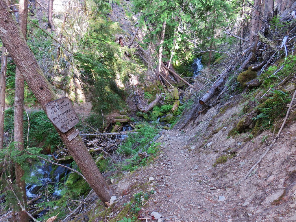 Elk Lake Creek Trail entering the Bull of the Woods Wilderness