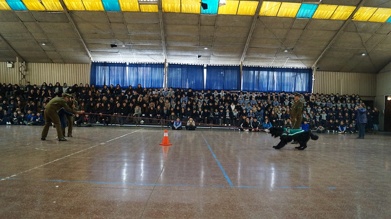 Colegio Santa Catalina Labouré - Semana de la Prevención de Drogas y Alcohol 2018