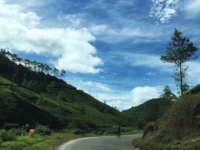 Pretty Sky of Munnar