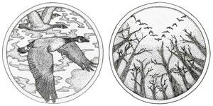 Wild Goose coin design