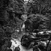 fine art black & white view of the falls on the River Braanin just north of Ossian's Hall, The Hermitage Pleasure Ground, Dunkeld, Perth & Kinross, Scotland