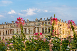 Flowers in front of Versailles Palace