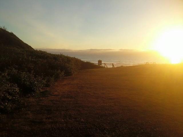 Coronado Shores, Corvallis, chickens n dogs 💜