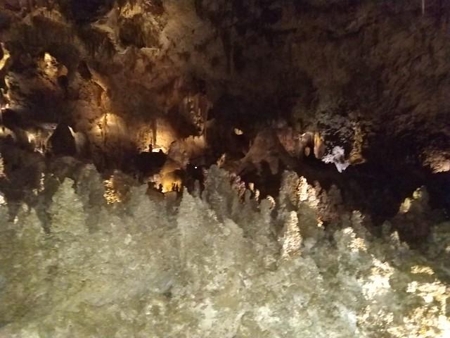 070218 Carlsbad Caverns NP (432)