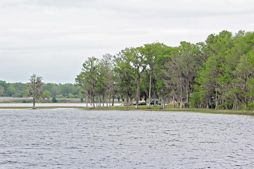landscape lake water inverness florida unitedstates