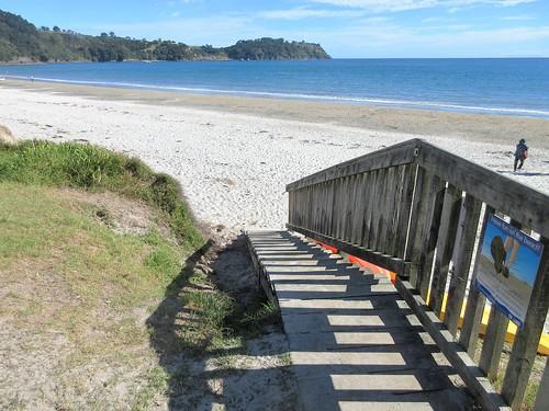 Auckland, NZ - Onetangi Beach, Waiheke Island