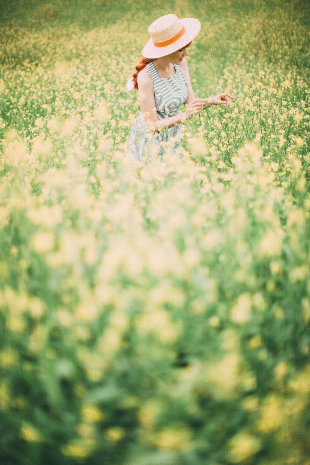 loughgall rapeseed-8