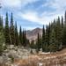 Kazakh mountains