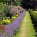 Oxborough Hall Gardens