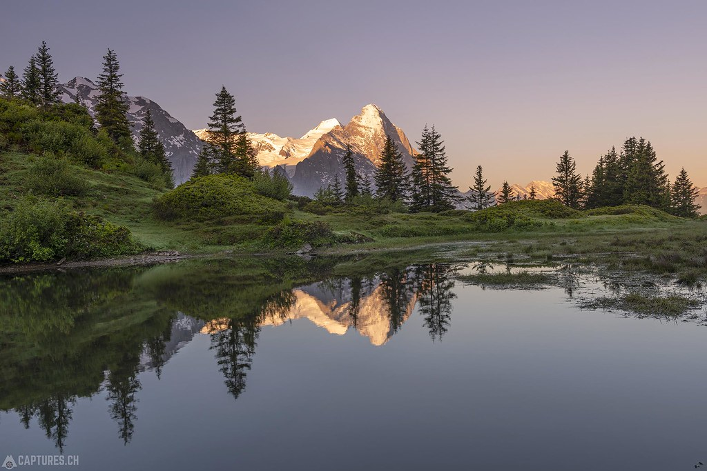 Eiger in the morning light - Grosse Scheidegg